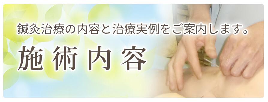 鍼灸治療の内容と治療実例をご案内します。施術内容